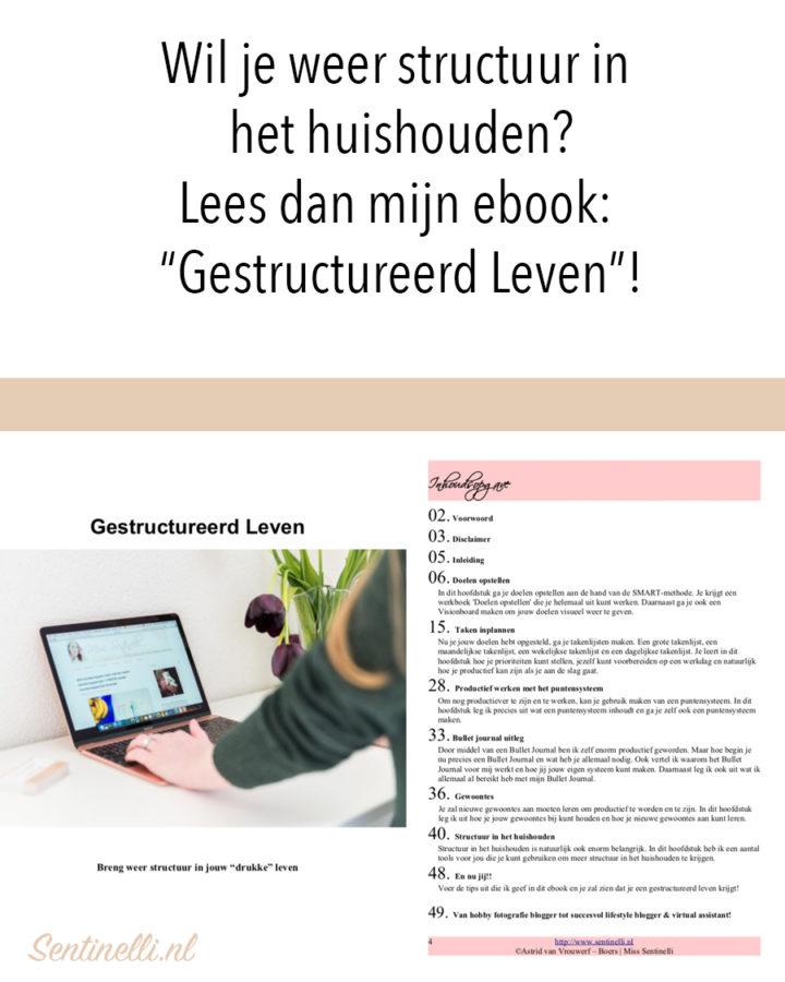 """Wil je weer structuur in het huishouden? Lees dan mijn ebook- """"Gestructureerd Leven""""!"""