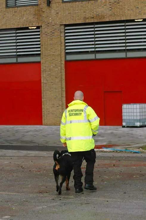 Security Dog Handling and Sniffer Dog Service