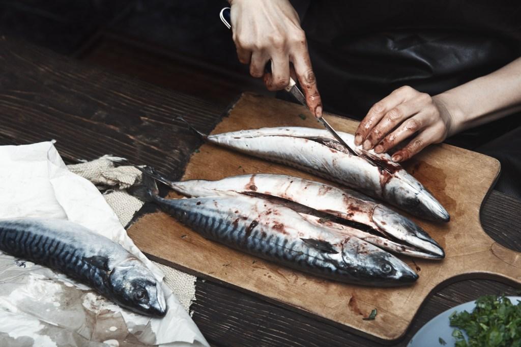 Öykü: Balık Sırtı | Yazar: Nurdan Yılmaztürk