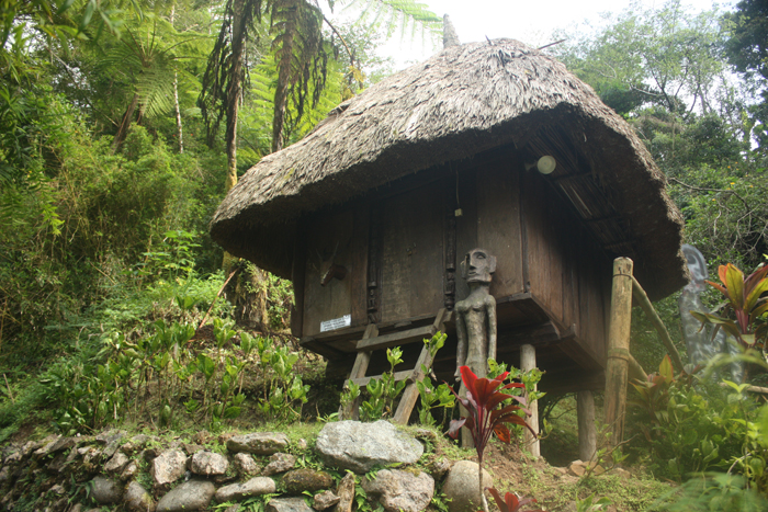 A native Cordillera hut. And it's for rent too