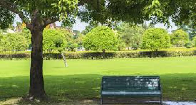 area verde di Via San Godenzo n. 14