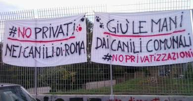 Muratella e Ponte Marconi, canili comunali Roma