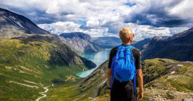 Cresce in modo ormai costante il dato riferito al turismo online; un comparto che può contare sulla diffusione capillare delle differenti tecnologie online.