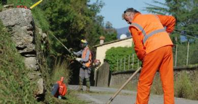 Campidoglio, al via l'uscita dei primi detenuti per la pulizia dei parchi.Da lunedì a Colle Oppio 18 detenuti di Rebibbia per lavori di pubblica utilità e recupero del patrimonio ambientale.