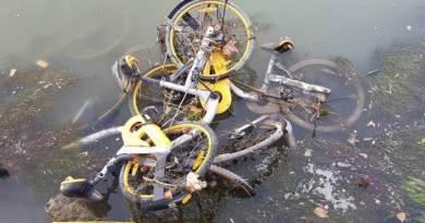 """Benvenuti (ecoitaliasolidale) il bike sharing ha fallito, necessario riprovare e non far fallire anche le """"tavolette elettriche"""""""