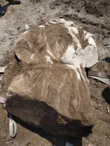 Ritrovato questa mattina un busto di una statua di guerriero Dace in marmo bianco dagli archeologi della Sovrintendenza Capitolina ai Beni culturali impegnati nello scavo archeologico di via Alessandrina.