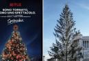 Albero di Natale; Roma ricerca sponsorizzazione