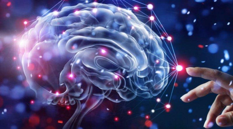Le Neuroscienze sono lo studio scientifico del sistema nervoso. È una scienza interdisciplinare, cioè che comprende più studi come l'anatomia, la biologia molecolare, la fisica, l'ingegneria e la psicologia.
