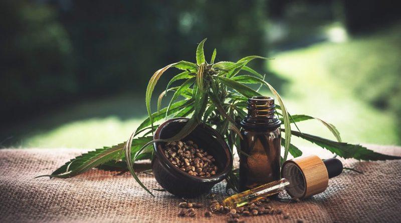"""CBD è la sigla che sta per """"cannabinoide"""", ovvero una sostanza naturale che si trova nella cannabis, nota anche come marijuana. Foto di Julia Teichmann da Pixabay"""