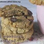 Oat coconut cookies