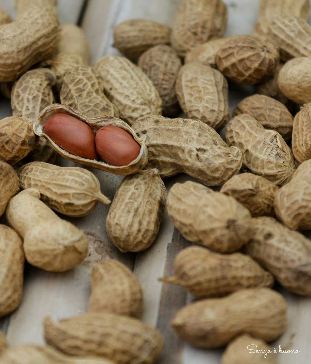 Arachidi tostate: frutta secca o legumi?