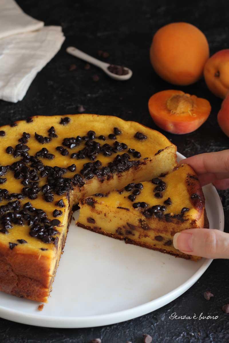 torta di albicocche ricetta senza glutine