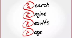 SERP صفحة نتائج البحث الطبيعية
