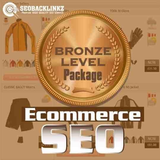 Ecommerce SEO - Bronze package