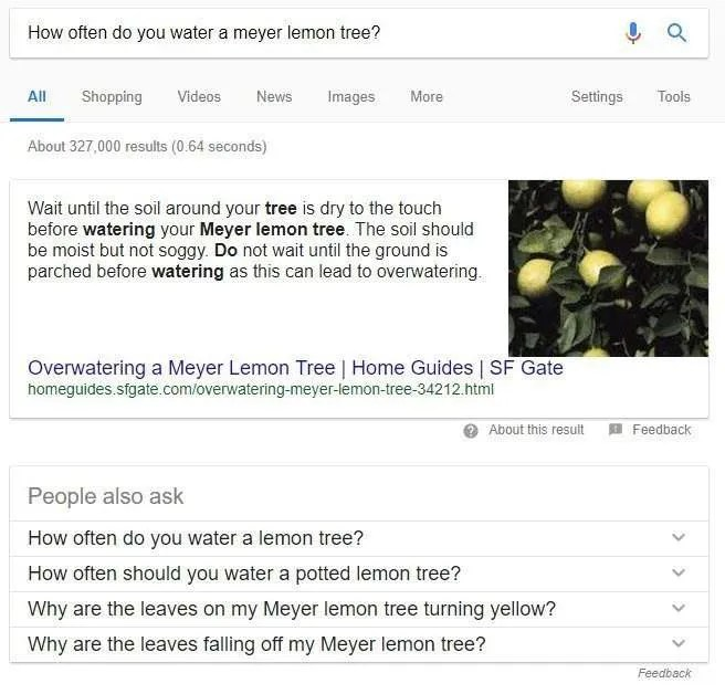 meyer lemon related questions