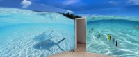 Wall Murals - Hand Painted Murals for Home & Business for ...
