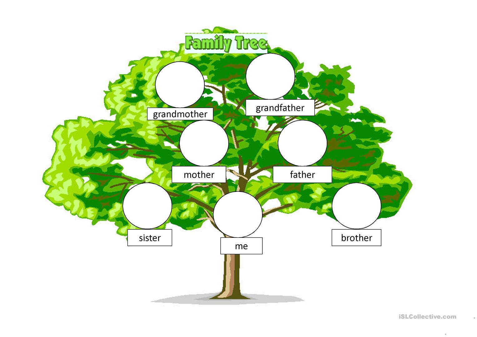 Drawing A Family Tree For 5