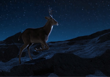 Amazing Deer Jump Intro Video