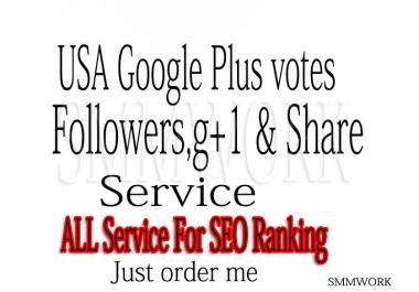U Will Get 200 US base Google Plus Circle Follow Only
