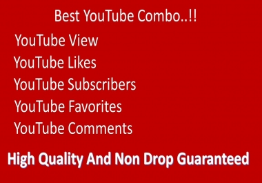 Super fast 1500- 2000+ YouTube high Quality Vi ews 12-24 hrs delivery and 2 comm ents
