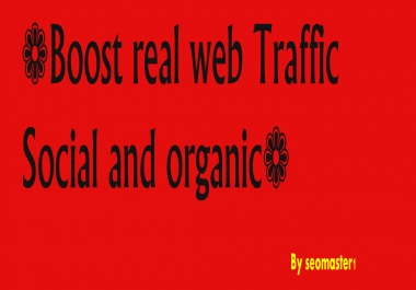 Drive 8000 Targeted And Adsense safe Real Human Traffic