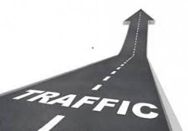 28 Days unlimited traffic, genuine targeted and real, make real money..