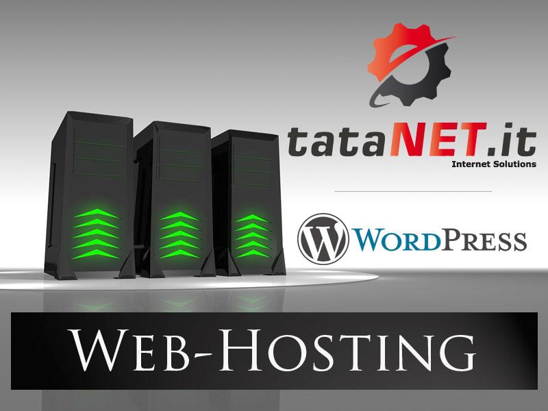 seonsite hosting web