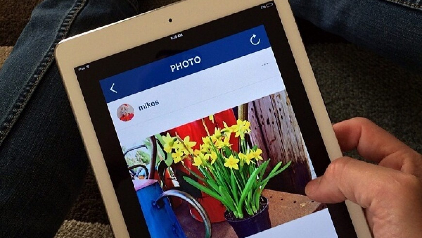 Instagram para negocios: conviértete en experto en marketing visual