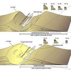 Levee Cross Section Diagram Animal Cell And Functions Deepwater Architecture Sepm Strata Sedimentary Character Of External Internal Levees Kane Hodgson 2010