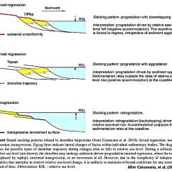 Slug Anatomy Diagram Electron Transport Chain With Explanation Sea One Ineedmorespace Co Sequence Stratigraphic Framework Sepm Strata Snail