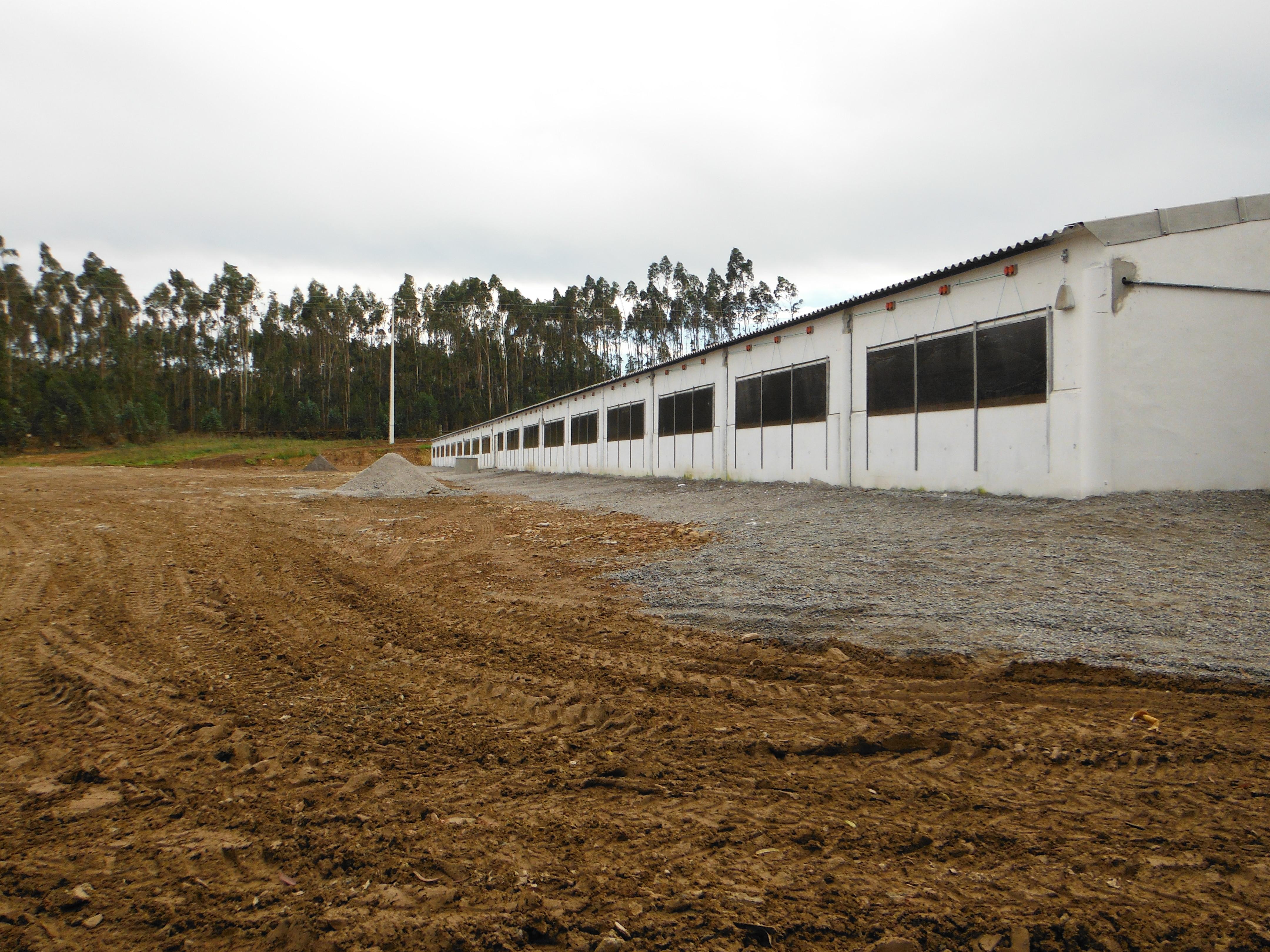 Construção 9