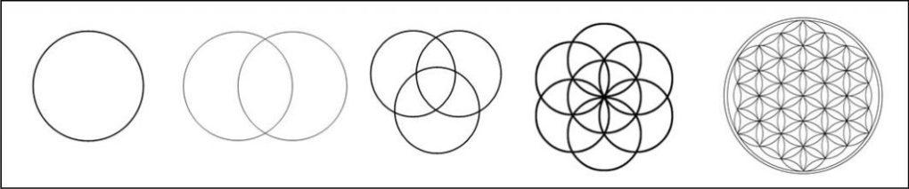 Cercles Fleur de vie