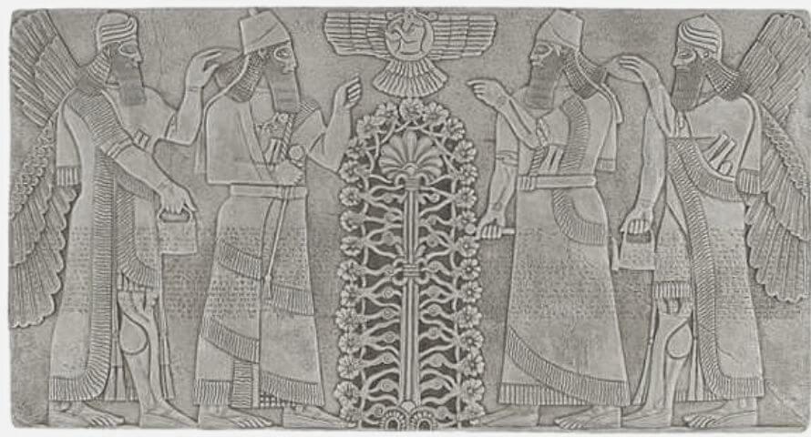 Symbole arbre de vie ancien