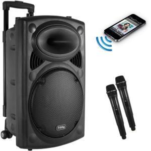 Speakers & Microphone