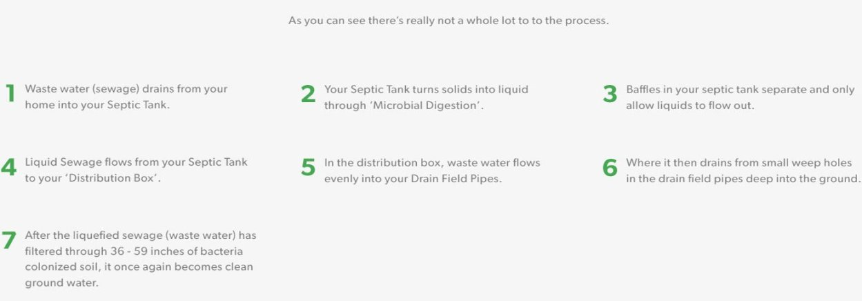 Landing Page - Septic Drainer