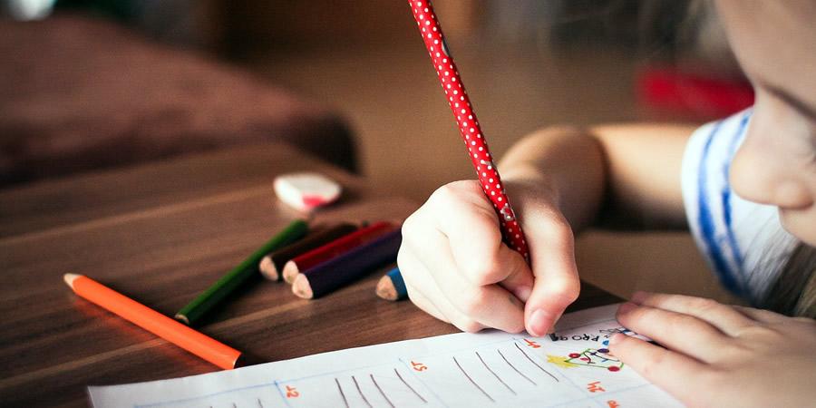 educacion e instruccion