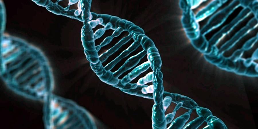 Teletransportación del ADN
