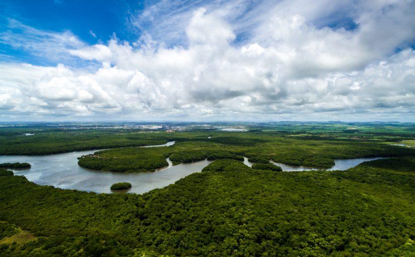 Progreso Amazonía