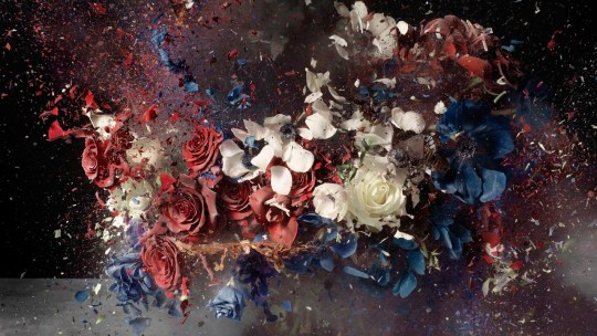 Ori Gersht, I Bought You These Flowers But They Exploded in the Most Amazing Way, 2014