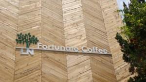 Fortunate Coffee