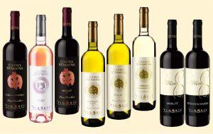 sticle-vinurile-vinarte-gama-enoteca1