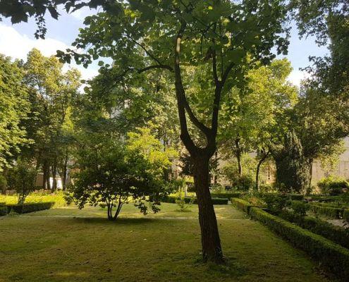 Le jardin des Carmes, ICP Paris