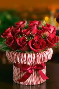 Candy Cane Vase & Roses