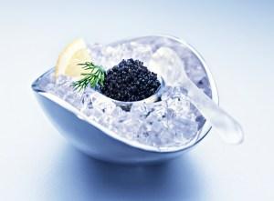 Caviar cold