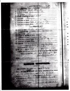 """Image of 1881 Marriage Certificate for Jacob """"Jake"""" Lemaster and Tabitha """"Bitha"""" Caudil."""