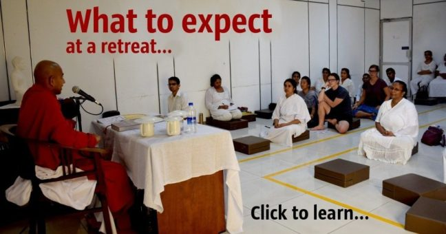 Find out what to expect when you come to one of our Buddhist meditation retreats in Colombo