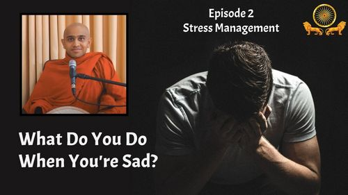 What Do You Do When You're Sad? l Stress Management l Episode 2