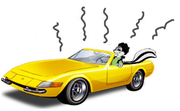 Good Clean Fun – turning your car from a shed on wheels to a clean dream machine!