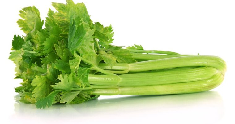 Love your leftovers:  Celery