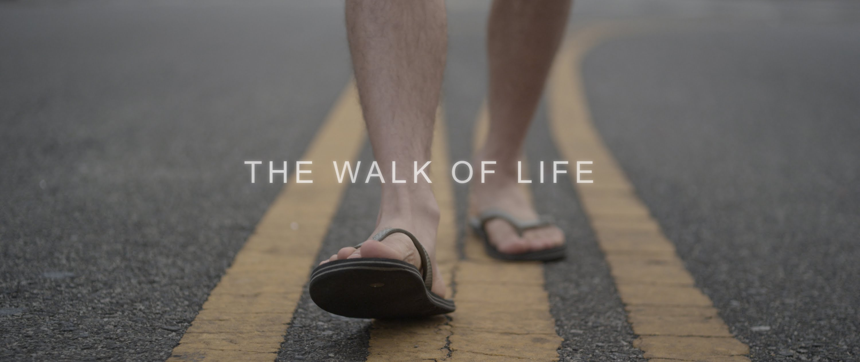 Yoga – The Walk Of Life